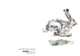 hare-copy