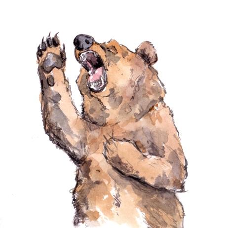 bear-singing-001