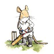 cricket-steve