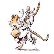 judo-steve