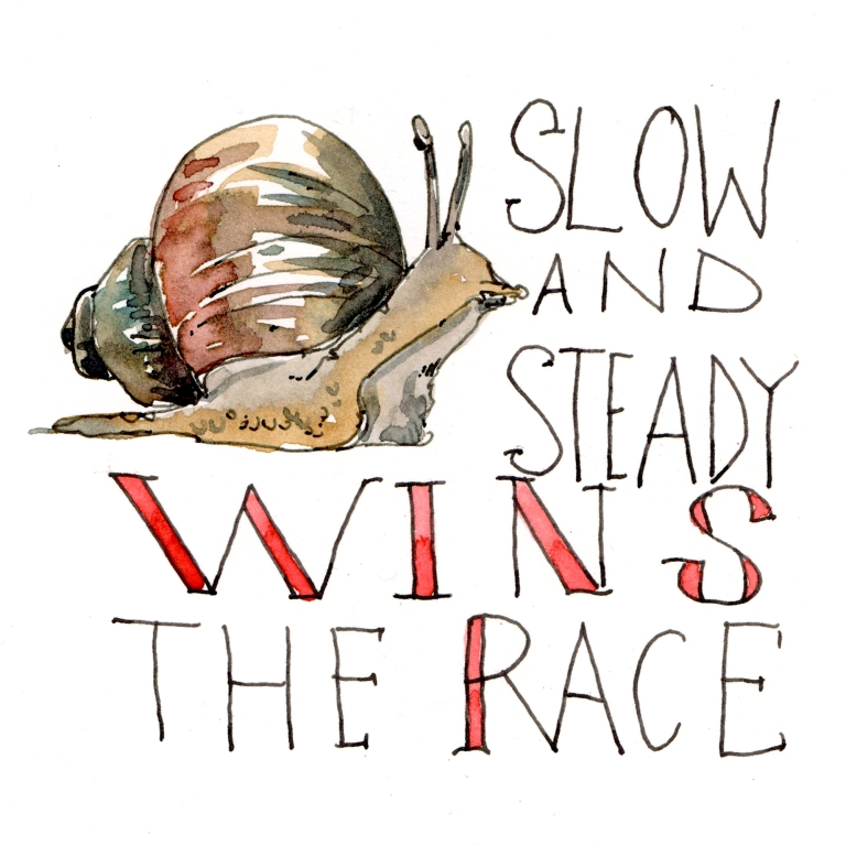 slow and steady wins the race 001