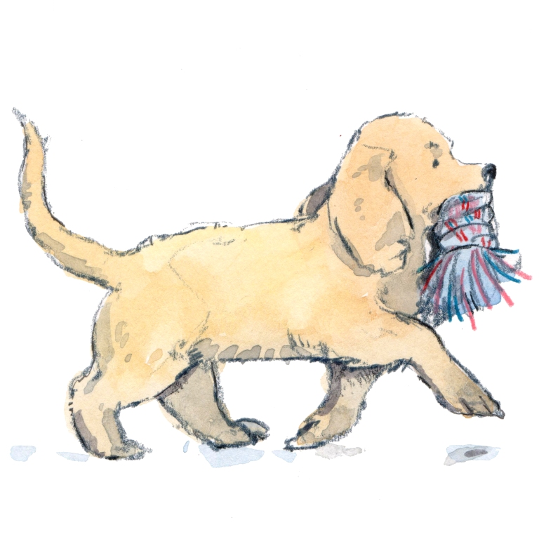 puppy with toy 001