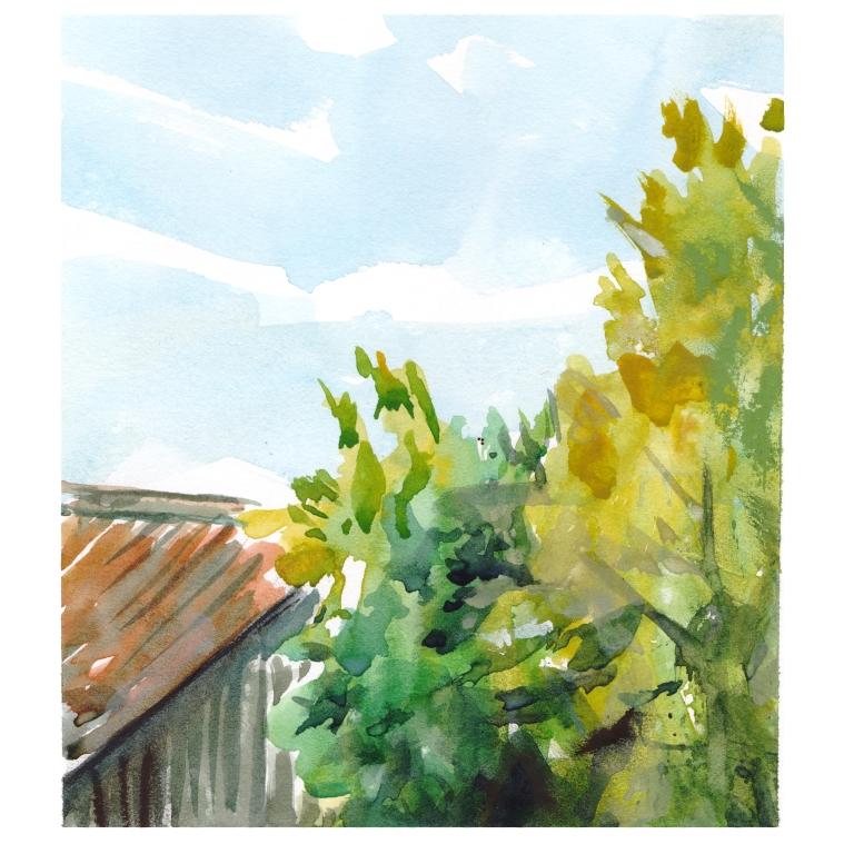 garden view 018