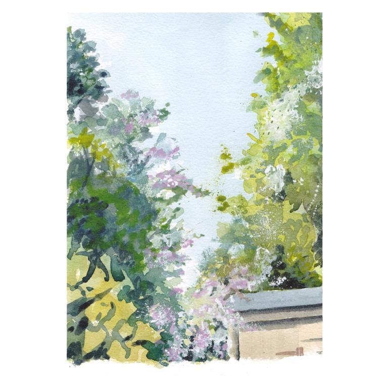 garden view 022