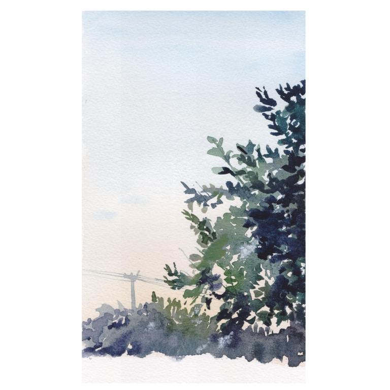 garden view 023