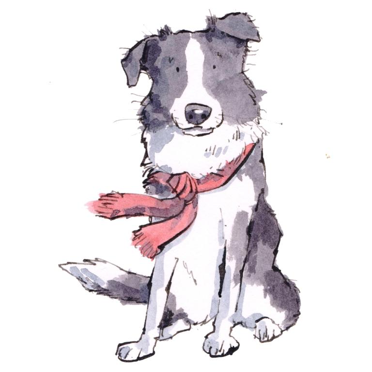 dog 053