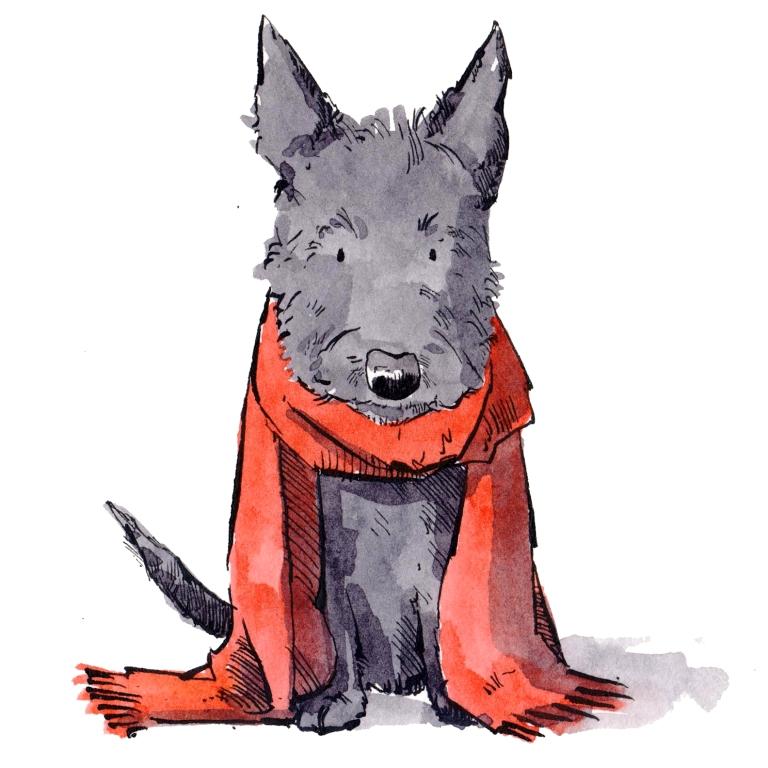 dog 066