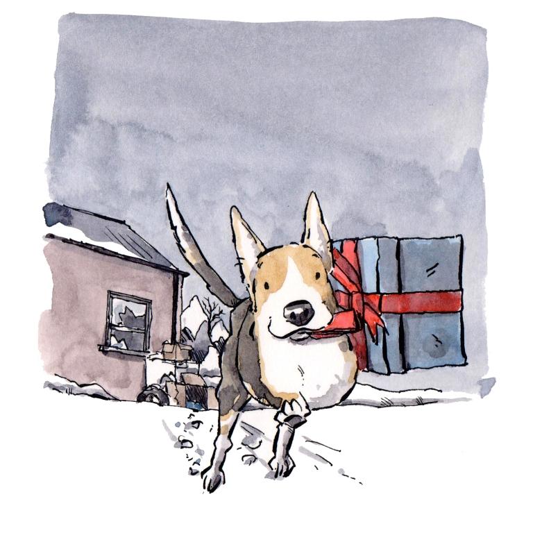 dog 123
