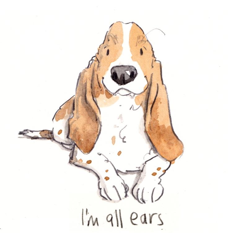 dog _20190519_0001