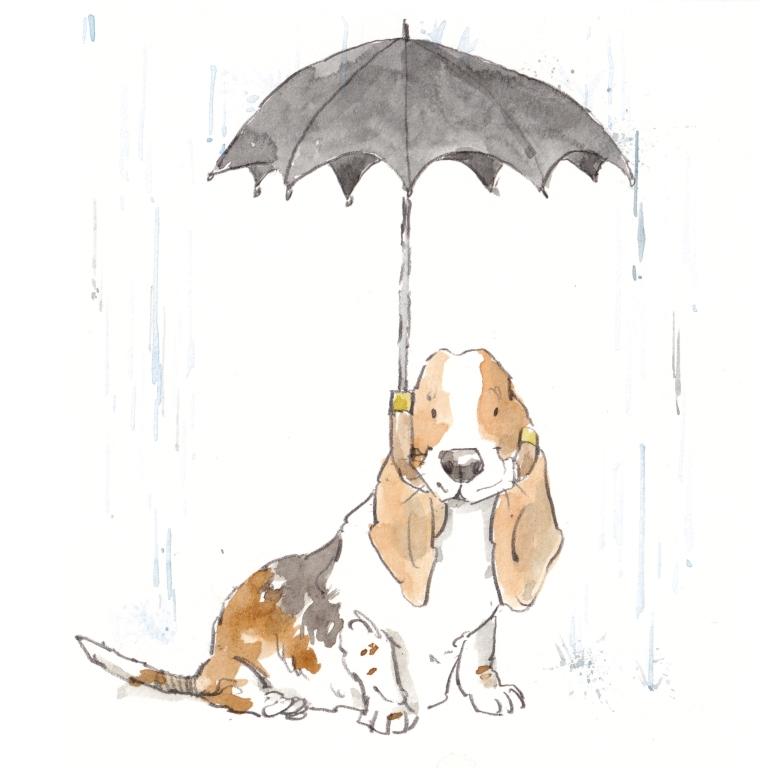 dog _20190520_0001