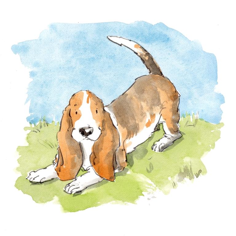 dog_20190524_0001