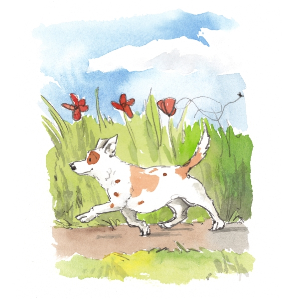 terrier out for a stroll in the field illustration