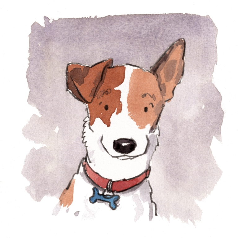 dog_20190812_0002