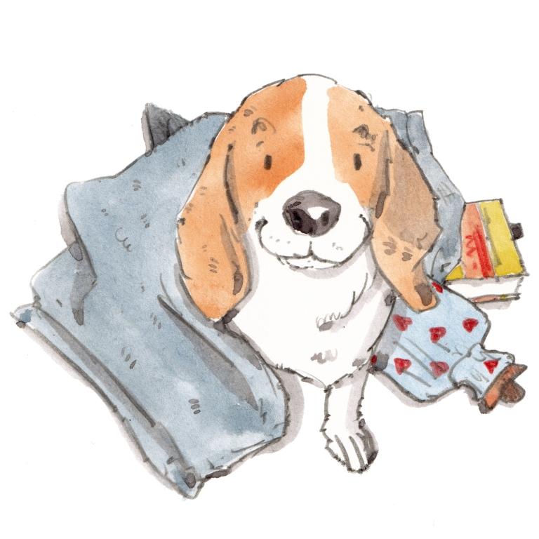 dog_20191015_0002