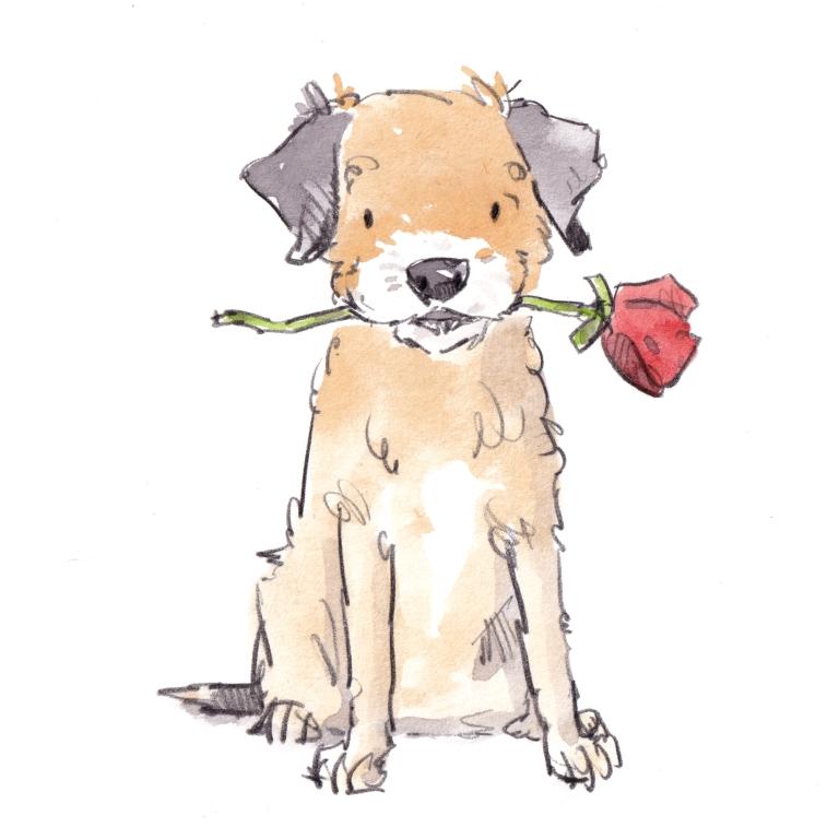 dog_20191022_0001