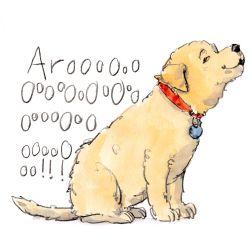 dog_20191117_0001