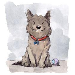 dog_20191130_0005 small