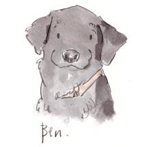 dog_20191229_0004