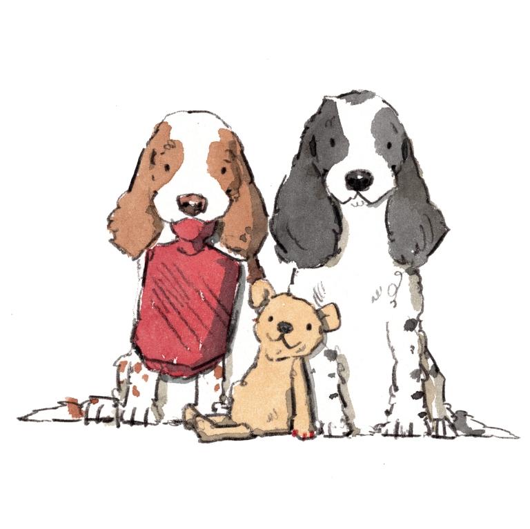 dog_20200125_0001