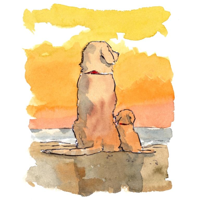 dog_20200128_0002small