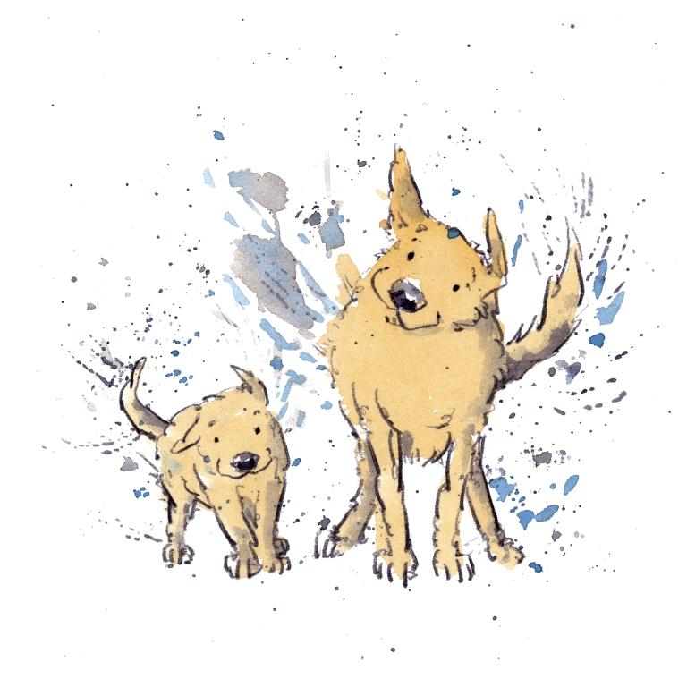 dog_20200131_0005small