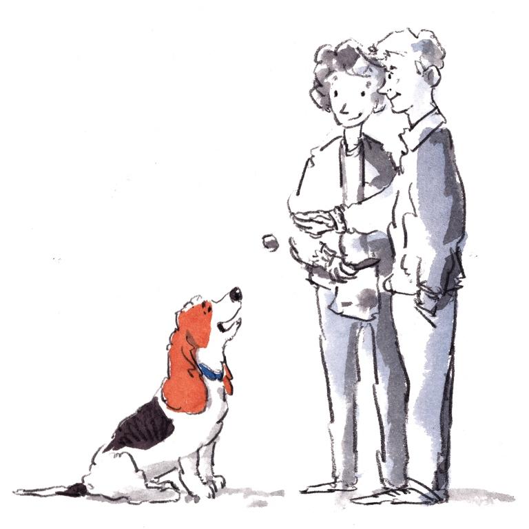 dog_20200219_0001small